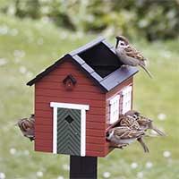 Fågelmatare Hus med bad, röd med småfåglar.