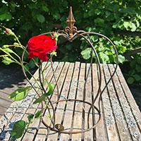 Trädgårdskrona med ros