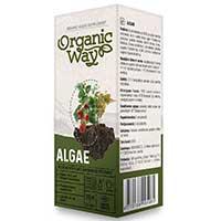 Tångextrakt Algae