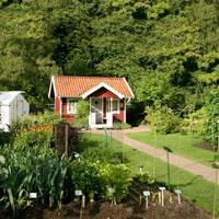Rådjursnät monterad rund odlingsland i trädgård