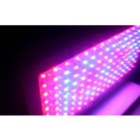 LED-lampa för växter