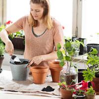 Biokol, 4 L - för bättre näringsupptag i jorden