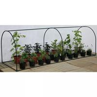Bågväxthus i litet format