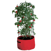 Odlingssäck med växtstöd för tomater