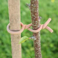 Gummiklädd ståltråd för uppbindning av växter