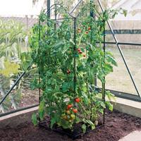 Tredelat ihopfällbart växtstöd