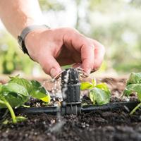 Smidig droppmunstyke till trädgårdsbevattning