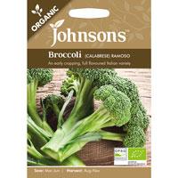 Ekologiskt frö till Broccoli 'Ramoso' , Brassica oleracea