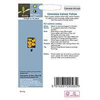 Odlingsråd för Ringblomma 'Calexis Yellow'