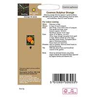 Odlingsråd för Rosenskära 'Sulphur Orange', ekologisk
