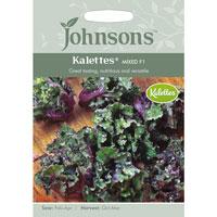 Rosettkål Mix F1, Brassica oleracea