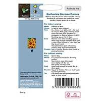 Odlingsråd för Sommarrudbeckia 'Gloriosa Daisy'