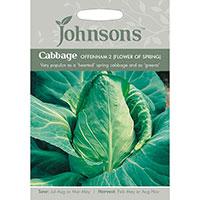 Spetskål 'Offenham 2', Brassica oleracea