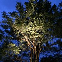 Belysning i trädgården med plug-and-play led
