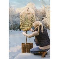 Fleece/fiberduk för vinterskydd av stora krukväxter och träd.