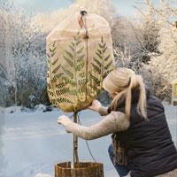 Vinterskyddshuva med ormbunksmotiv för växter ute.