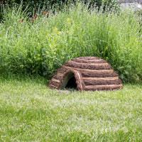 Igelkottsbo i trädgård
