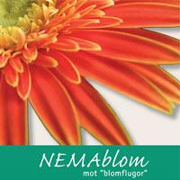 Nemablom, nematoder mot blomflugor och sorgmyggor i jorden