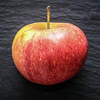 Äpple 'Cox Pomona'