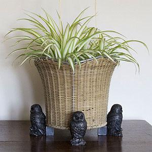 Krukfötter med djurmotiv för krukor på terrass, balkong och inomhus.