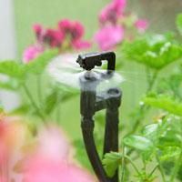 Flopro droppbevattning för växthus