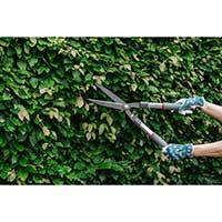 Häcksax för beskärning av häckar och buskage