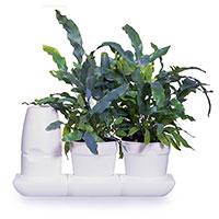Självbevattningssystem Minigarden Baic Pots S