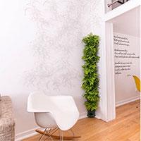 Påbyggd Minigarden Corner planterad med ormbunke inomhus