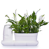 Självbevattningssystem Minigarden Baic Uno S