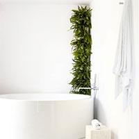 Minigarden Corner Column, vertikalodling i badrummet