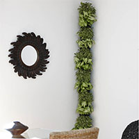 Utbyggd växtvägg för hörn Minigarden Corner Column