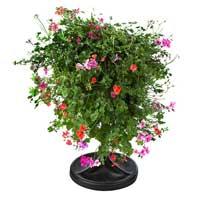 Plantopia ställning med blomsterklot