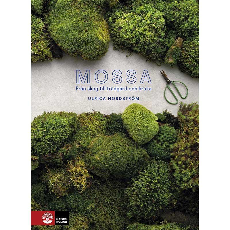 Mossa från skog till trädgård och kruka