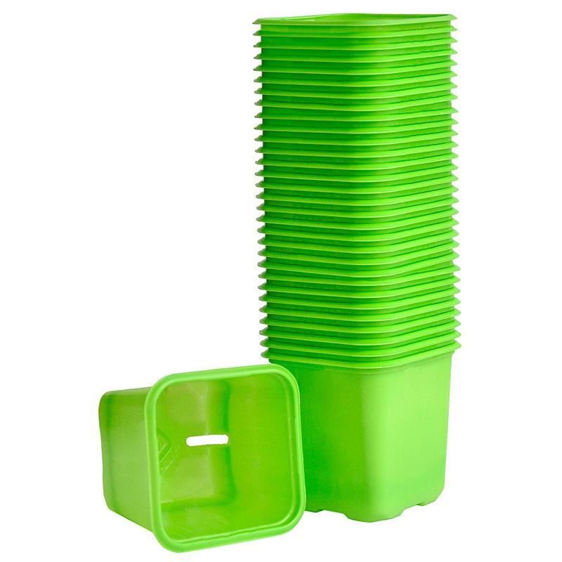 Limegröna plastkrukor för frösådd och plantor