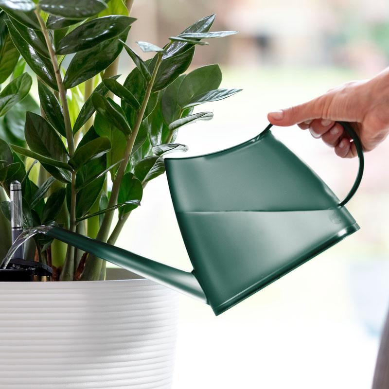 Genomskinlig vattenkanna Fuchsia 1,5 liter, smokey green