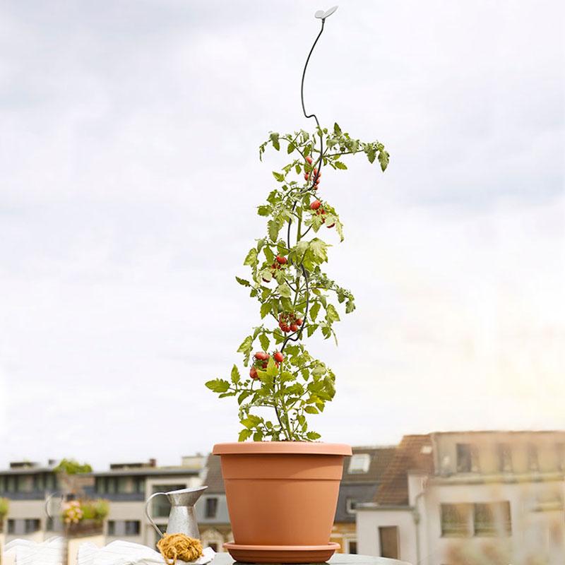 Växtstöd med bladfinial
