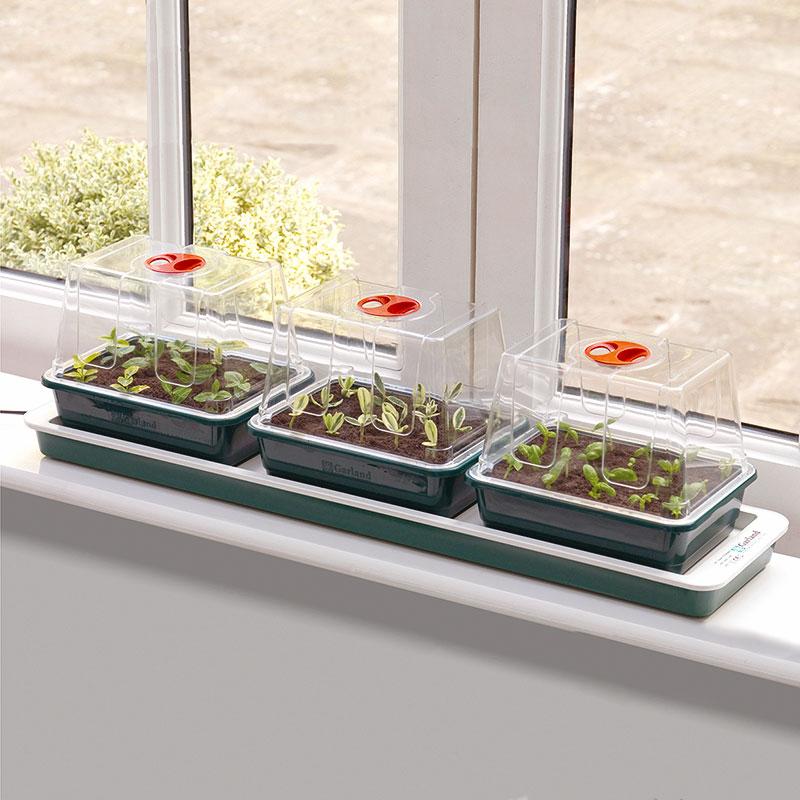 miniväxthus för fönsterbrädan med undervärme