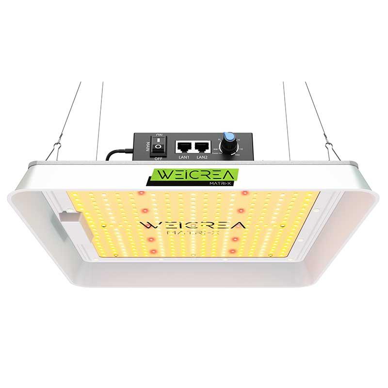 Full Spektrum LED växtbelysning för alla växter och grönsaker.