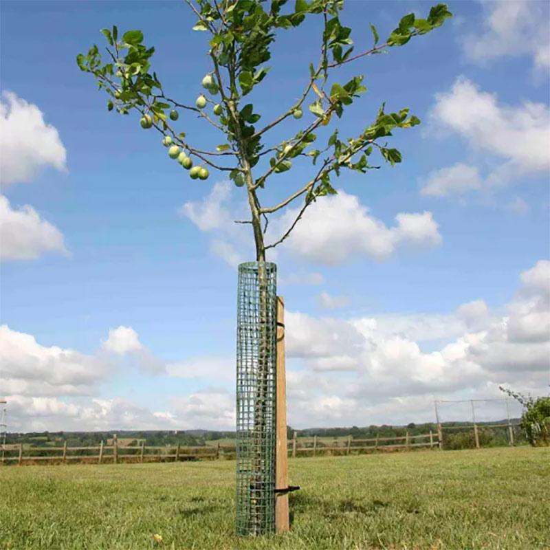 Fleximesh Stamskydd för träd