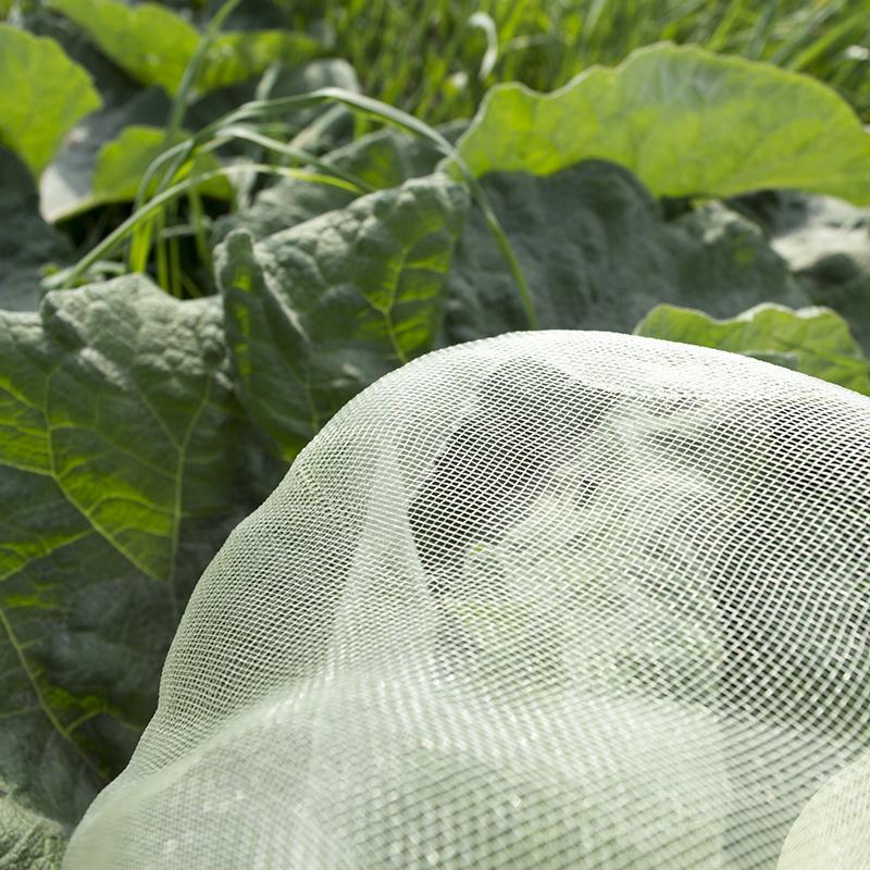Täckväv för växtskydd och drivning av växter