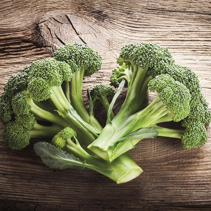 Frö till Broccoli 'Ramoso' , Brassica oleracea