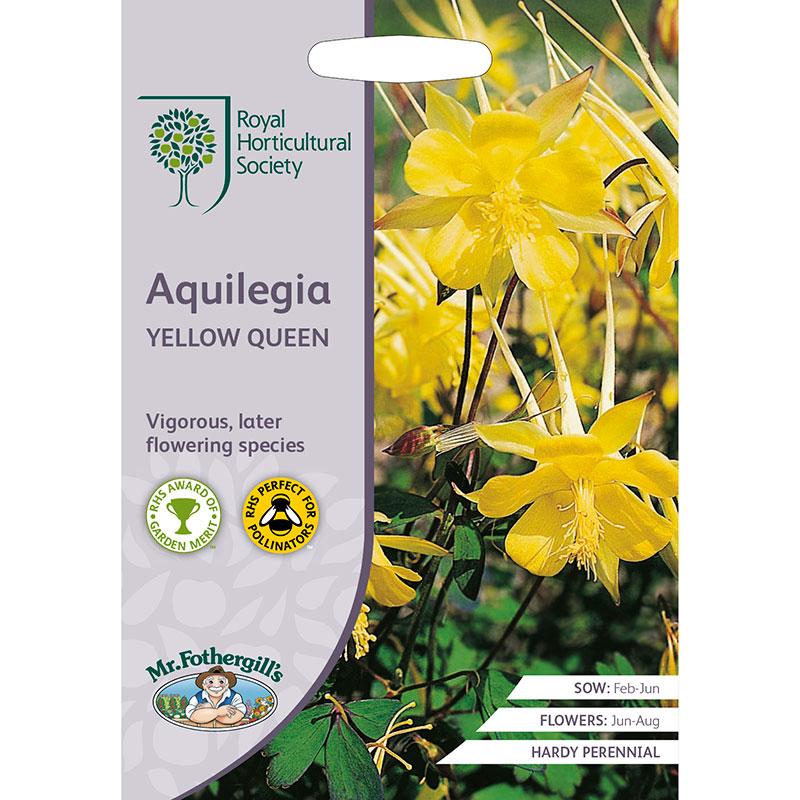 Frö till Guldakleja 'Yellow Queen', Aquilegia chrysantha