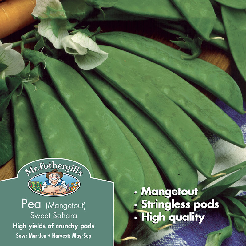 Frö till Sockerärt 'Sweet Sahara', Pisum sativum