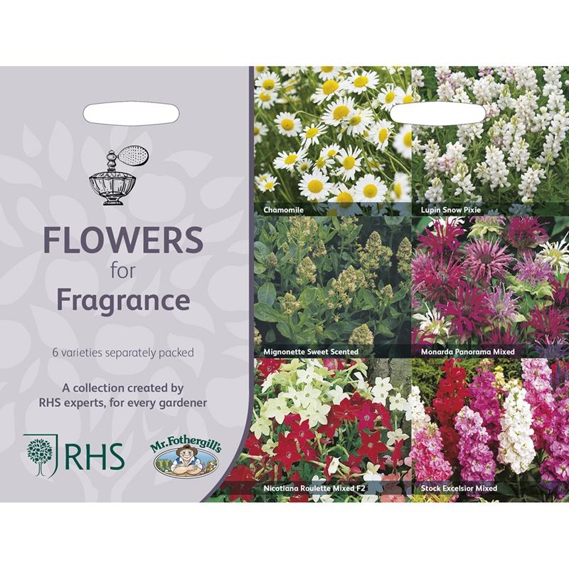 Frö till Väldoftande blommor 6 sorter