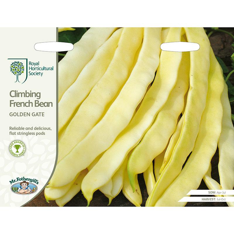 Frö till Vaxböna 'Golden Gate', Phaseolus vulgaris