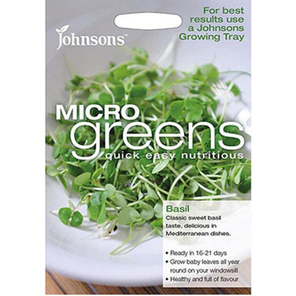 Micro greens - Basilika-Frö till liten basilika som micro-sallad