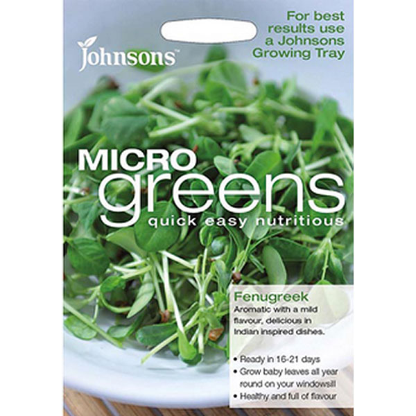 Micro greens - Fenugreek-Frö till fenugreek odlad som micro-sallad