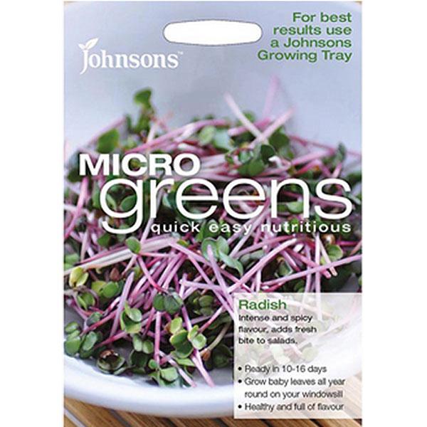 Micro greens - Rädisa-Frö till rädisa odlad som micro-sallad.