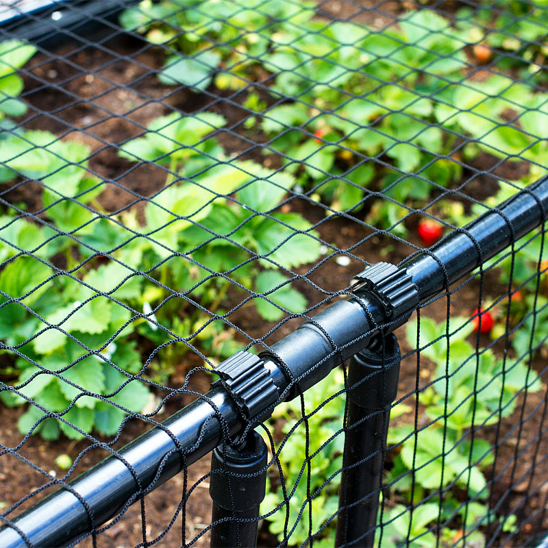 Växtskyddsnät för skydd mot skadegörare