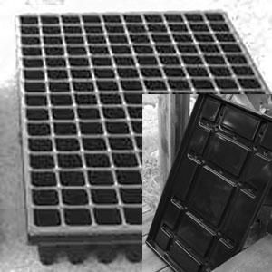 Pluggbrätte 150 celler + bevattningsbricka-Pluggbrätte 150 celler med underbevattningsbricka